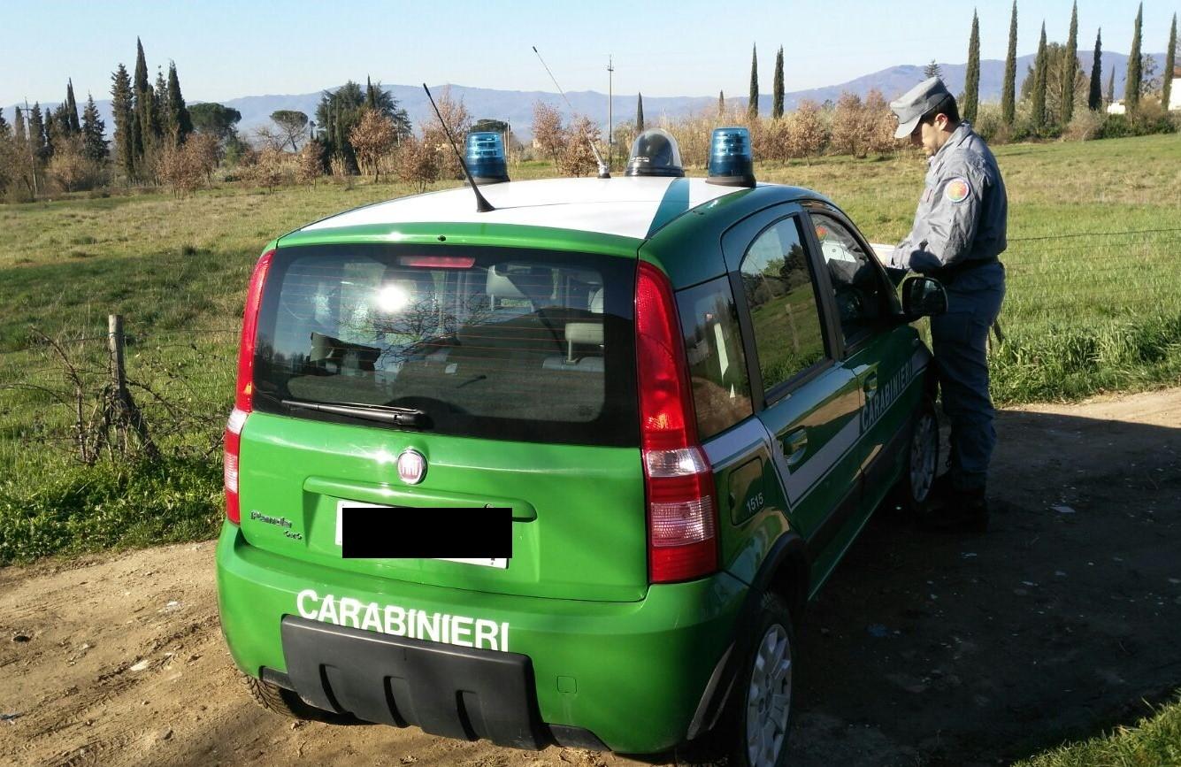 Carabinieri forestali (fonte foto comunicato stampa)