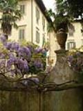 Casa Giusti, esterno con glicine