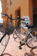 Biciclette Auser