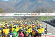 GP Run 2014