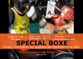 Special boxe