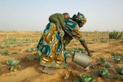 Lavoro di donne in Africa