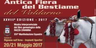 Locandina evento a Rignano