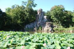 Gigante dell'appennino nel Parco di Pratolino