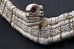 Dai nativi americani ai fossili di tutto il mondo