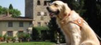 Scuola Cani Guida, Open Day (fonte foto sito Regione)