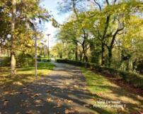 Parco viale Tanini
