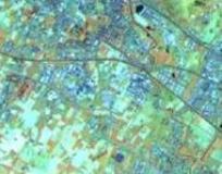 Immagine satellitare sul sito Lamma