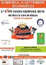 al Centro ippico Scandicci la seconda Expo Canina nazionale