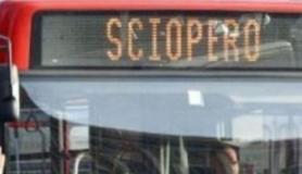 Bus in sciopero sul sito USB