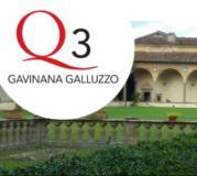 Firenze Q3