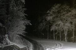 Neve al Passo della Colla