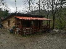 Abuso edilizio nel bosco nel comune di ScarperiaSanPiero (FonteCarabinieri)