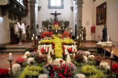 Fiori e piante come simboli della Resurrezione