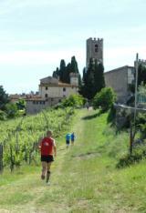 passaggio lungo vigna a Badia a Passignano