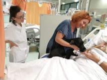 Cane nello in terapia intensiva con paziente