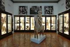 una sala del Museo di Antropologia(fontefotoUnifi)