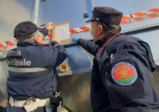 Controllata azienda nel comune di Campi Bisenzio dalla Polizia Municipale e dai Carabinieri Forestali 8fonte foto comunicato stampa)