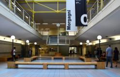 Orientamento Unifi, open day alla Scuola di Scienze Matematiche, Fisiche e Naturali