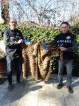 Pellicce di Leopardo