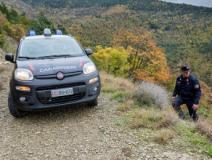 Carabinieri forestali a Barberino di Mugello