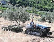 Mamma voglio fare il contadino - Matteo col trattore (Foto da comunicato)