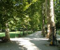 Sesto, parco del Neto