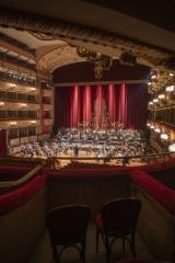 Orchestra della Toscana (foto fonte da comunicato)