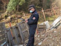 Intervento dei Carabinieri Forestali lungo la Greve