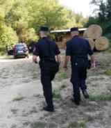 Intervento dei Carabinieri forestali a Borgo San Lorenzo