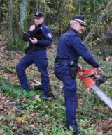 Intervento dei Carabinieri Forestali