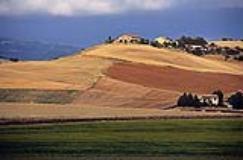 Campagna toscana, agricoltura (Fonte foto Regione Toscana)