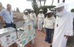 Istallazione apiari a San Miniato
